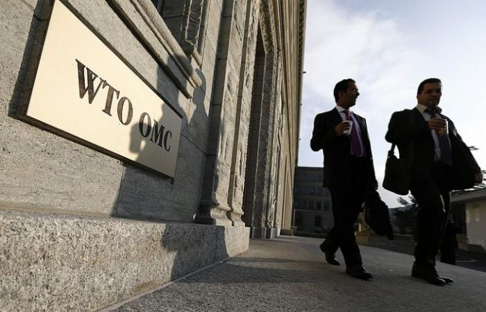 Бандиты из ВТО хотят силой заставить Россию покупать отравленную свинину из Европы