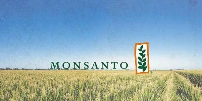 БиоУгроза: «Монсанто» открывает первый завод в России