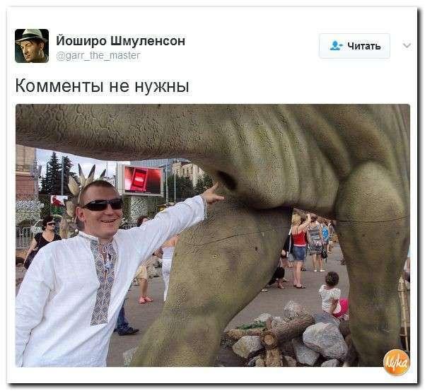 Юмористическо-саркастическая подборка материалов об обстановке в Мире №330