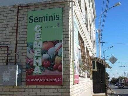 БиоУгроза: Монсанто уже распространяет ГМО семена в России