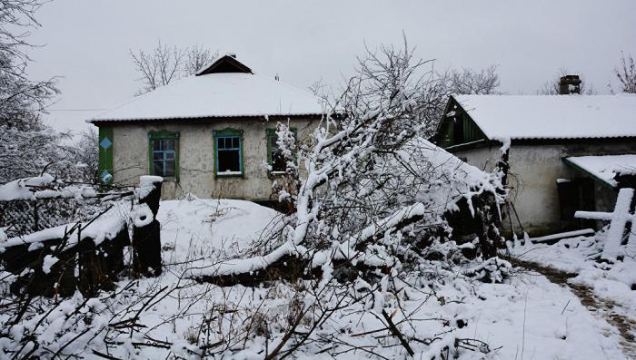 Украинский мэр города в Донбассе посетовал на порченный «генофонд» населения
