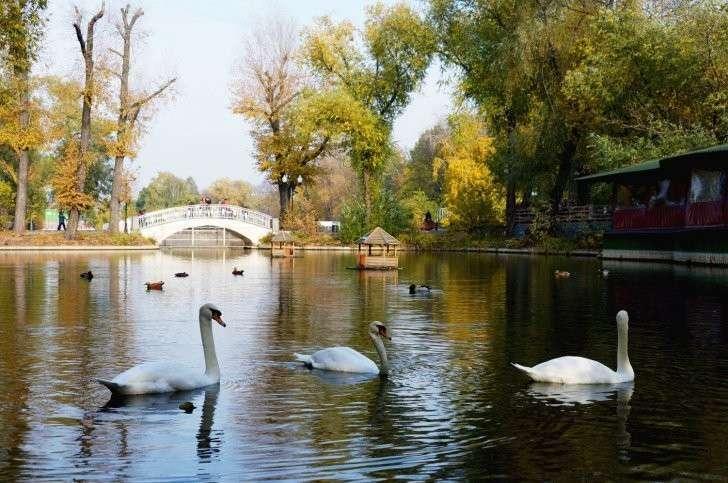 Где живется чище? Составлен экологический рейтинг субъектов России