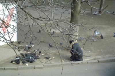 Украина: голодные люди отбирают хлеб у голубей