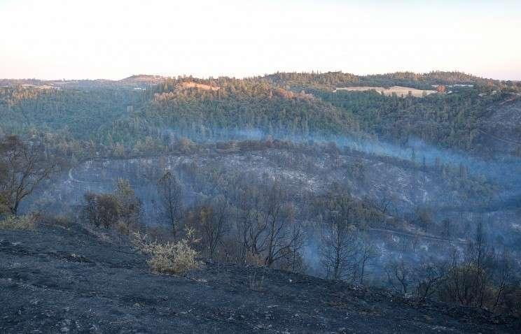 В Калифорнии из-за лесных пожаров введён режим чрезвычайной ситуации