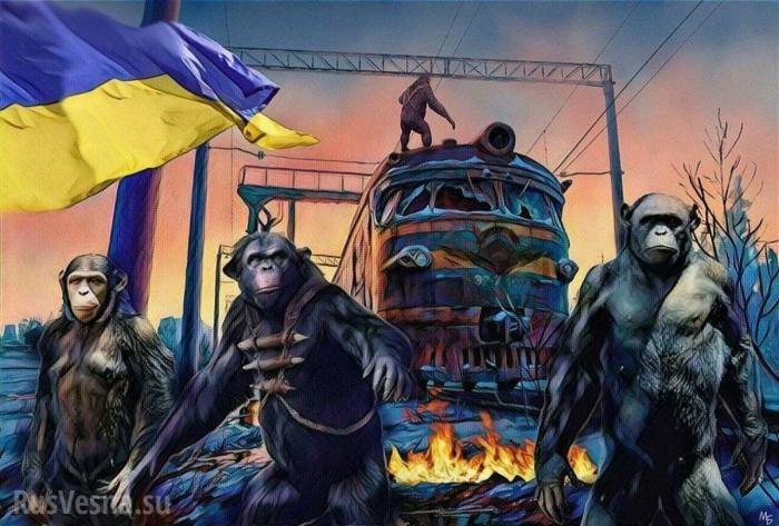Блокада Донбасса: песнями и вышиванками майдауны победят Россию