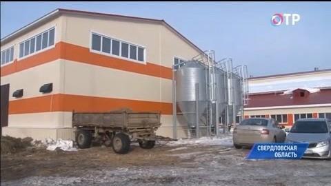 ВСвердловской области корпус, который простаивал 9 лет, превратили в современную козью ферму