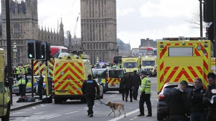 Теракт в Лондоне: Великобритания является рассадником терроризма