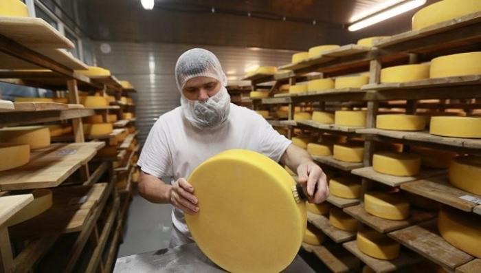 Пять марок белорусского сыра запретили ввоз в Россию