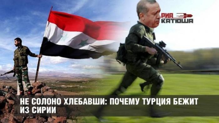 Не солоно хлебавши: почему Турция свёртывает «Щит Евфрата» и бежит из Сирии