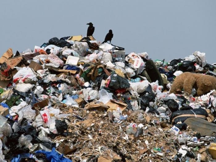 Система «Платон» будет контролировать вывоз мусора в российских городах