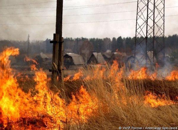 Спасите же Россию от пожаров, в конце концов