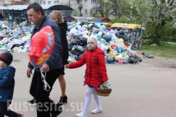 Шокирующие кадры Пасхи на фоне гор мусора во Львове | Русская весна
