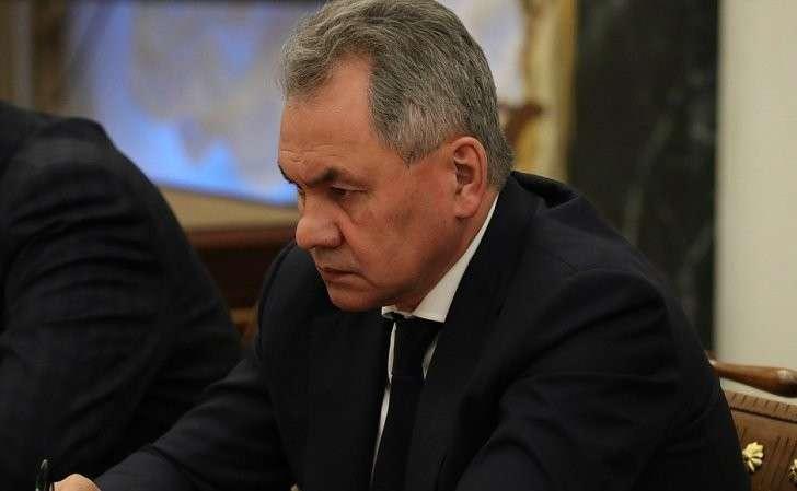 Министр обороны Сергей Шойгу насовещании спостоянными членами Совета Безопасности.
