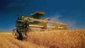 Неиспользуемые земли возвращают в сельхозоборот для импортозамещения в Волгограде