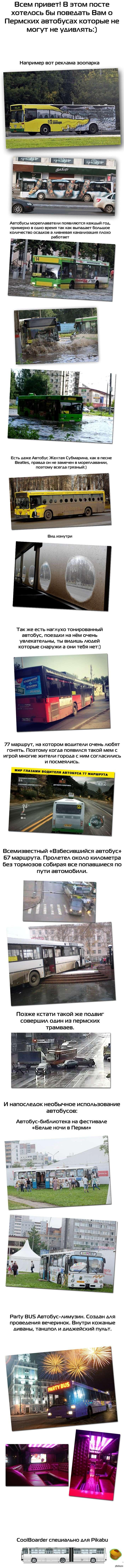 Пермские удивительные автобусы