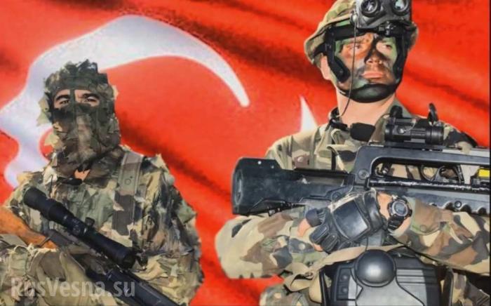 Сирия: Зачем Эрдоган бросает пушечное мясо на захват северных территорий страны