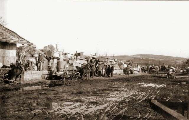 Выселение украинцев из Польши. 1946