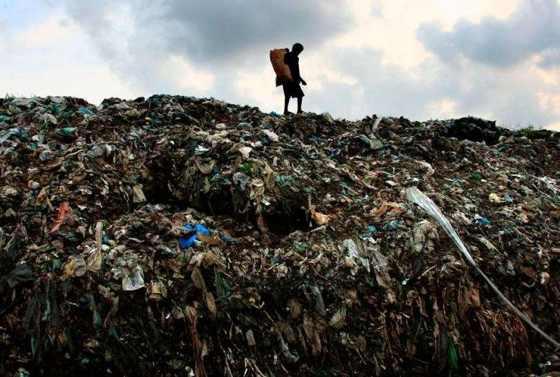 ООН: в мире голодают 795 миллионов человек. Перенаселение виновато или что-то другое?