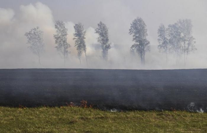 В Сибири площадь лесных пожаров возросла почти в два раза