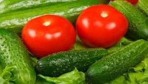 импортозамещение, огурцы и помидоры