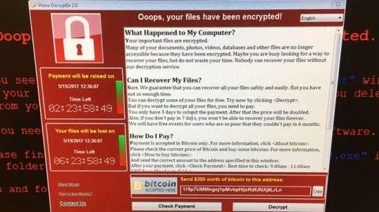 Технический сбой сайтов МВД и ГИБДД по Воронежской области – следствие хакерской атаки?