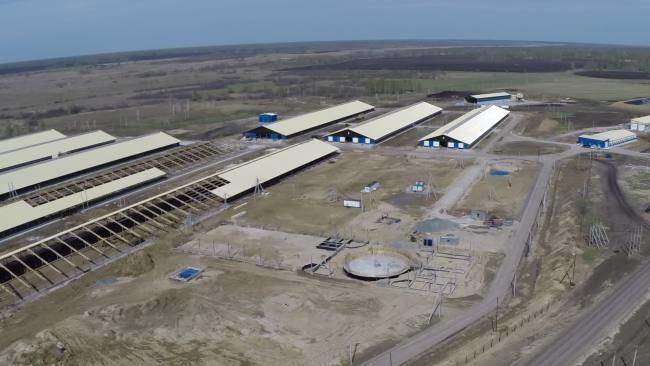В Тюменской области введена в эксплуатацию первая очередь мегафермы «Дамате»