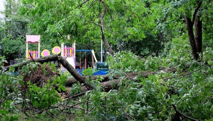 В Москве объявлено штормовое предупреждение из-за прогнозируемого усиления ветра