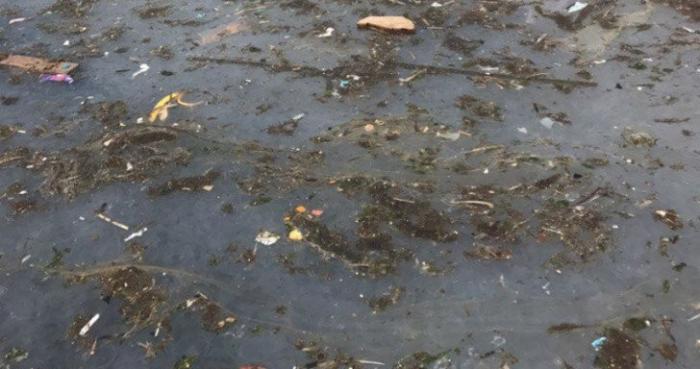Балаклавская бухта утопает в грязи, пора предпринимать меры