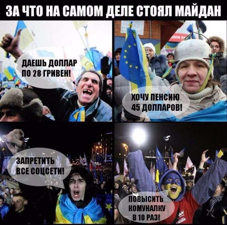 А могли бы просто попросить Януковича, или За что стоял