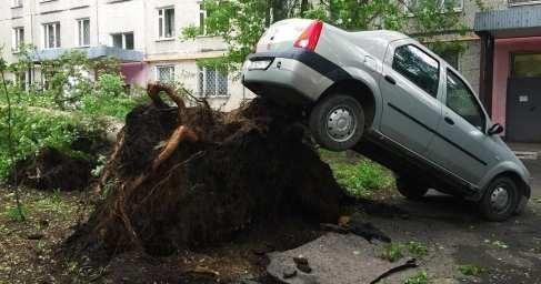 Ураган в Москве: число погибших увеличилось до шести человек
