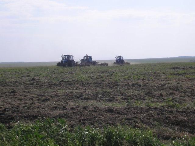 Пензенская область: введено воборот почти 10 тысяч гектарнеиспользуемых земель