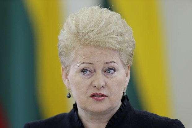 Президент Литвы назвала Россию основной проблемой для стран Прибалтики