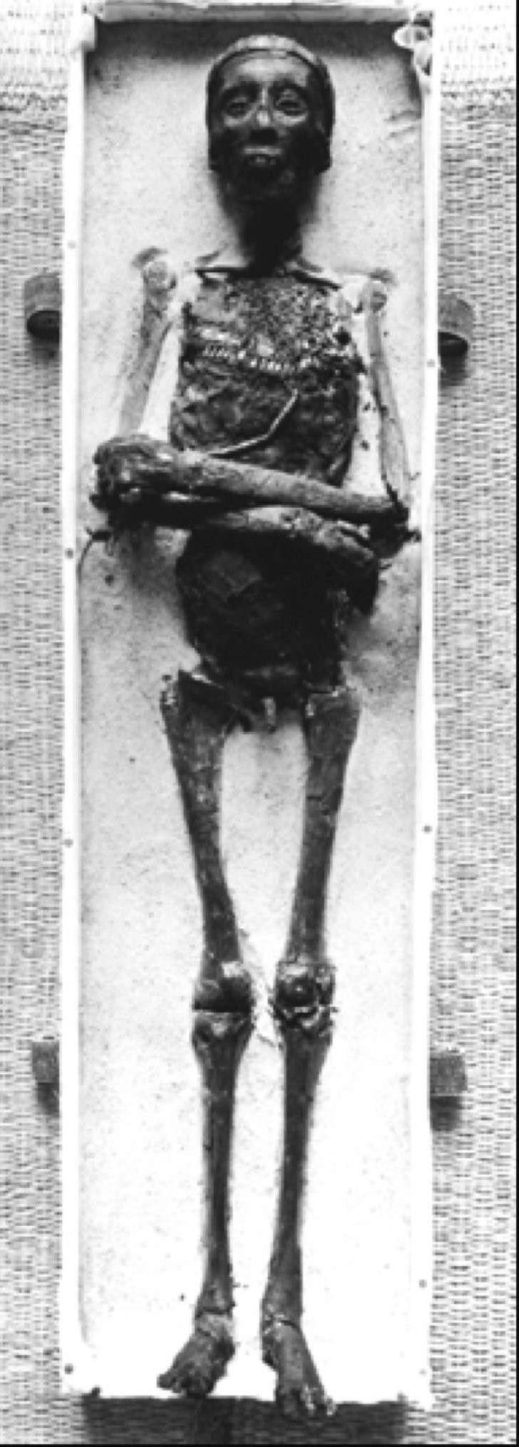 Тутанхамон неплохо сохранился, чтобы когда-нибудь вернуться из царства мертвых.