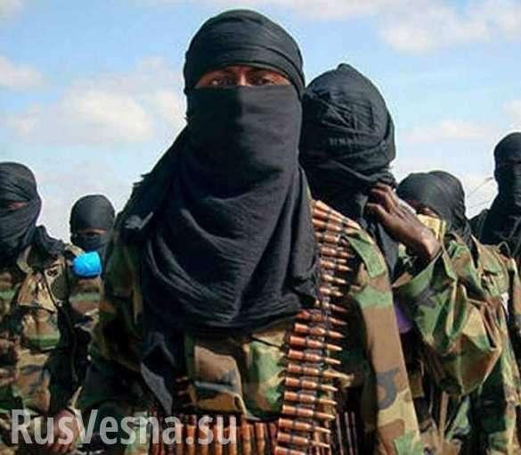 Катар – главный стрелочник по терроризму на Ближнем Востоке? | Русская весна
