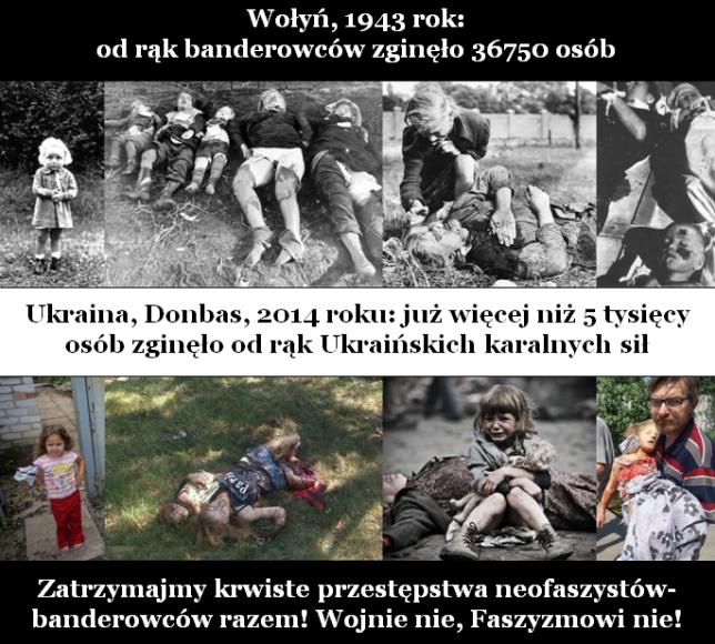 КиберБеркут обращается к польскому народу с призывом прекратить геноцид   жителей Донбасса