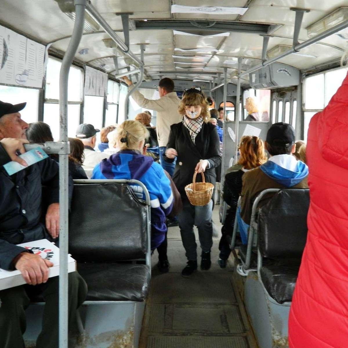 В Рязани жители города смогли прокатится с учёным котом на «Читающем троллейбусе»
