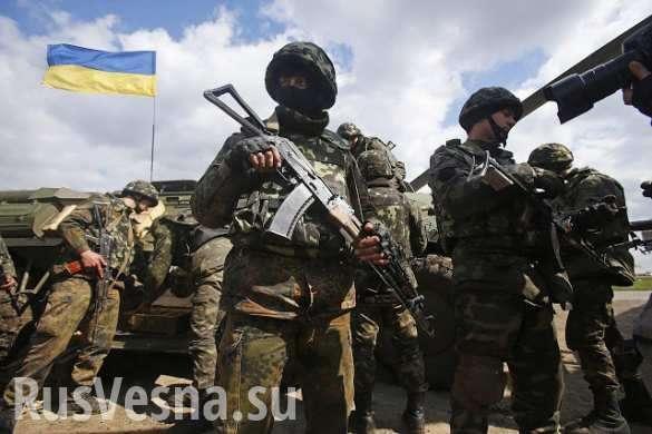 Кровавые грабли ВСУ: почему украинская атака «захлебнулась» вЖелобке (ФОТО, ВИДЕО) | Русская весна