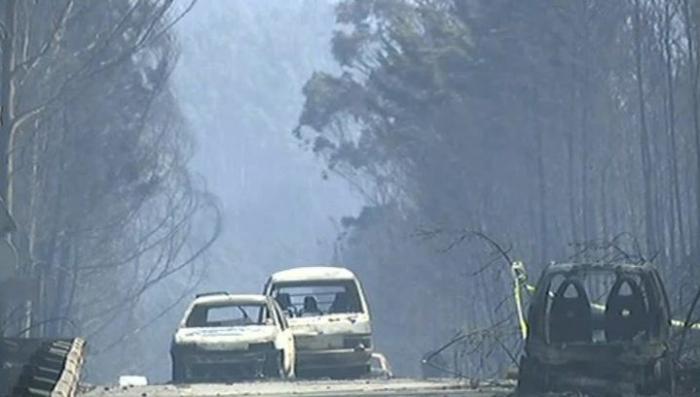 В Португалии пожары стали настоящей катастрофой: люди в машинах сгорают заживо