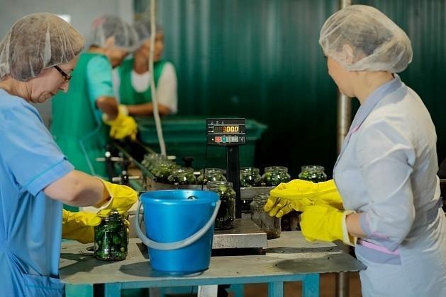 ВВолгоградской области открылся завод по переработке овощей
