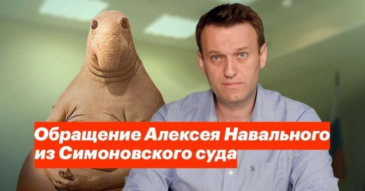 Самоустранение Навального на месяц: что показал его арест?