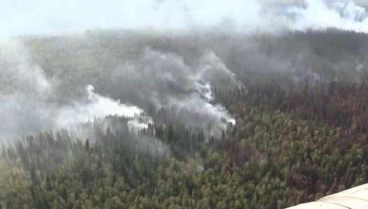 В Сибири аномальная жара осложняет борьбу с пожарами
