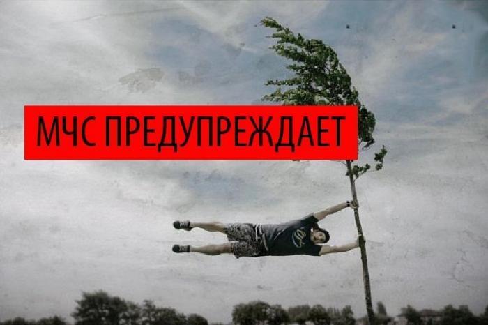 В МЧС предупредили о шквалистом ветре в Москве до 24 м/с