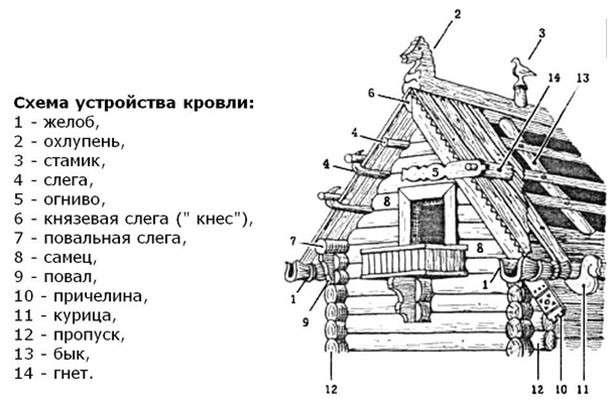 Русские и европейцы просто похожи или имеют общие корни? Так откуда взялись европейцы?