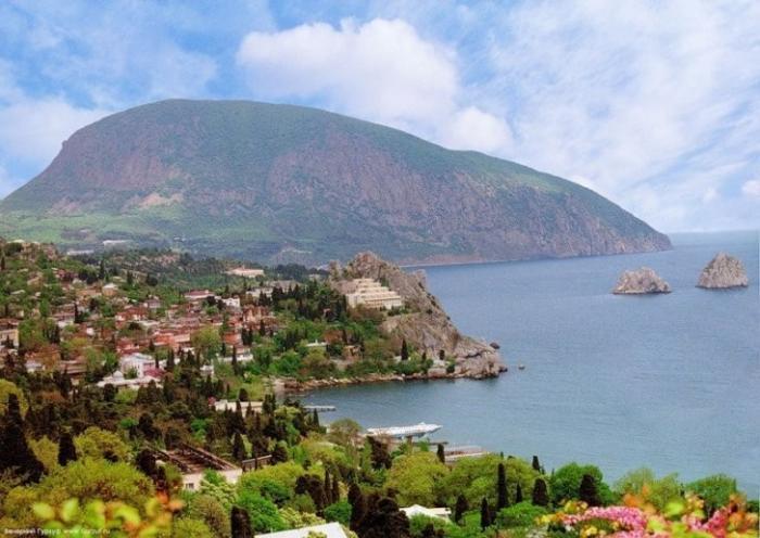 В Крыму, обходя запреты, итальянцы начнут производство оливкового масла