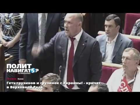 На Украине депутата, заявившего об захвате власти иностранцами, обвинили в ксенофобии