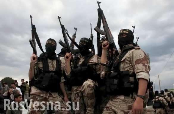 Сирия, ИГИЛ: конец все ближе. Зарплата наёмников США продолжает снижаться | Русская весна