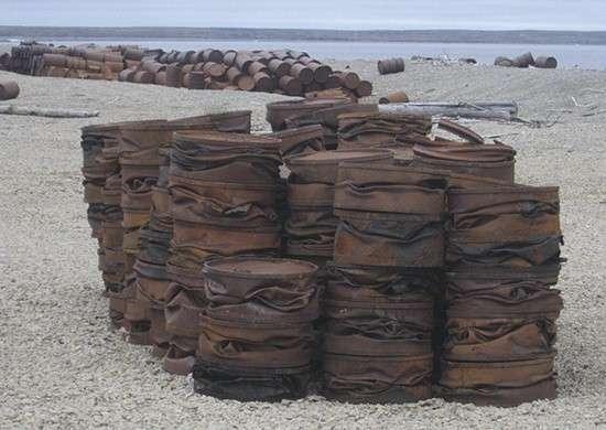 Экологический взводСФ спрессовал наострове Котельный более 8 тысяч бочек