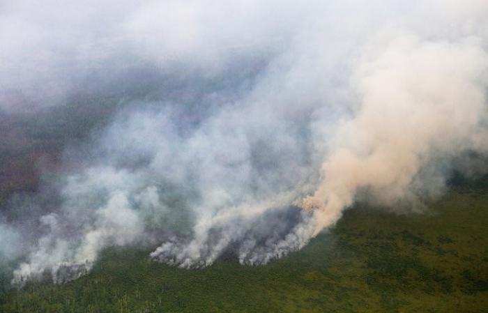 На Ямале площадь пожаров за сутки увеличилась в пять раз