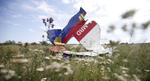 В катастрофе MH17 виновна Украина – заявил немецкий адвокат погибших пассажиров