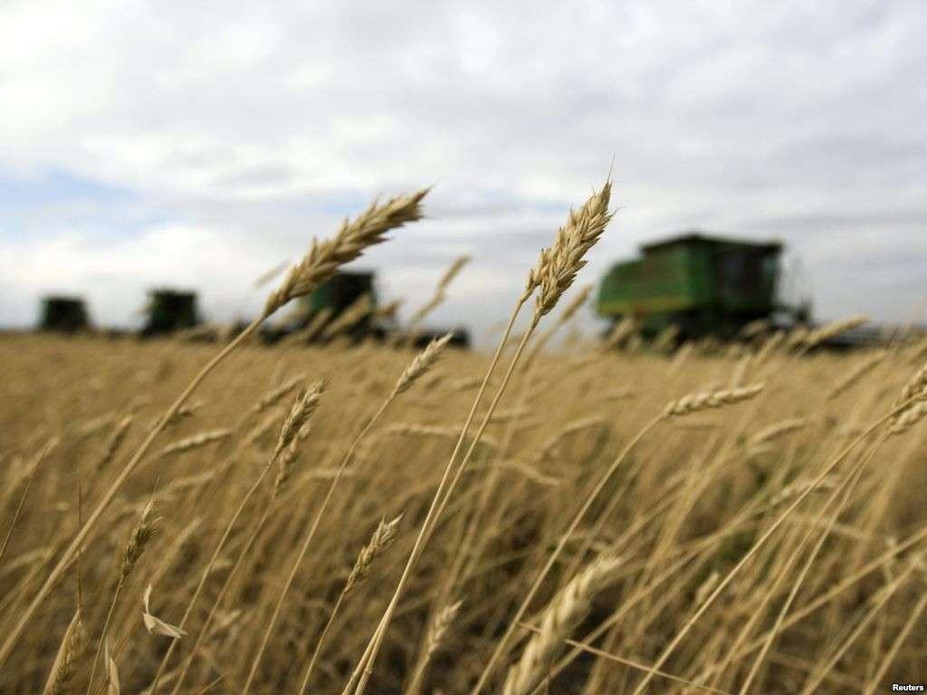 Крах украинского сельского хозяйства